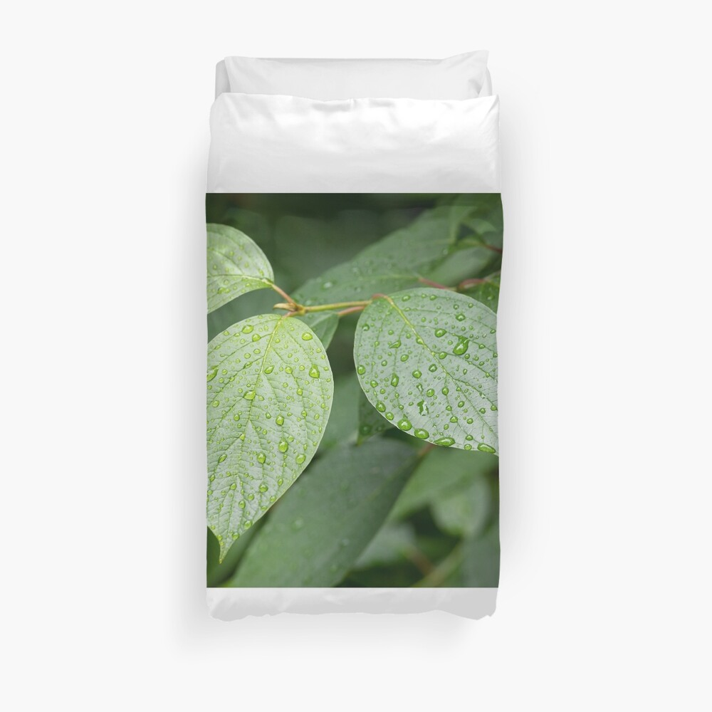 Water drops on green leaves after rain Duvet Cover
