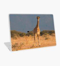 Baby Giraffe Laptop Skin