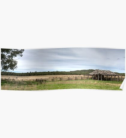 The Shearing Shed Panorama - Oxley Downs Poster