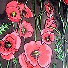 Poppies XIV by Alexandra Felgate