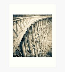 Trestle Bridge Noojee  Art Print