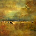 """""""Harvest Time ..."""" by Rosehaven"""