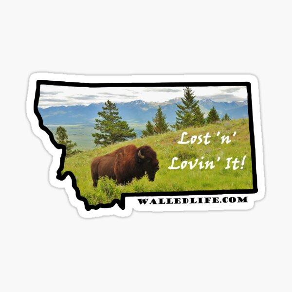 Montana Bison Sticker