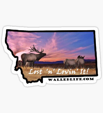 Montana Elk Sunset Sticker