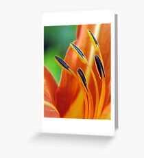 In Conjunction Greeting Card
