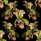 Paphiopedilum Orchids, Lady's Slipper Watercolor by Nisuris
