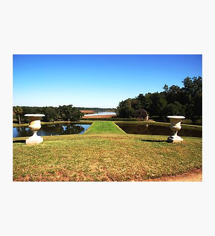 Looking down to the Ashley River - Middleton Place Charleston Photographic Print