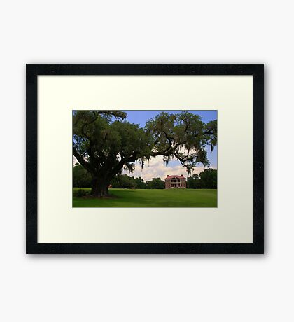 Drayton Hall Plantation, Charleston Framed Print