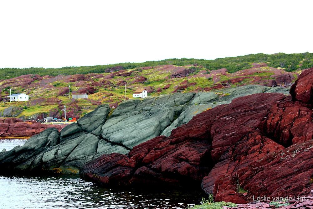 Red Rock Green Rock by Leslie van de Ligt
