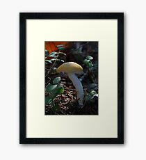 """Yellow Cap"" Framed Print"