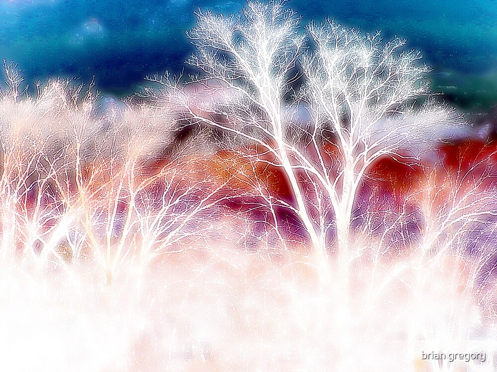 wild trees by brian gregory