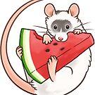 Wassermelonenscheibe von pawlove