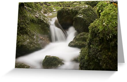 Tiny Waterfall Time Lapse by FortnightA