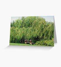 Bench By The Weeping Willow Greeting Card