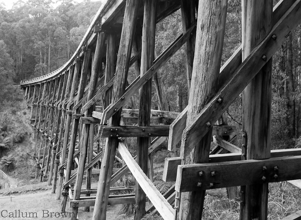 Trestle Bridge by Callum Brown