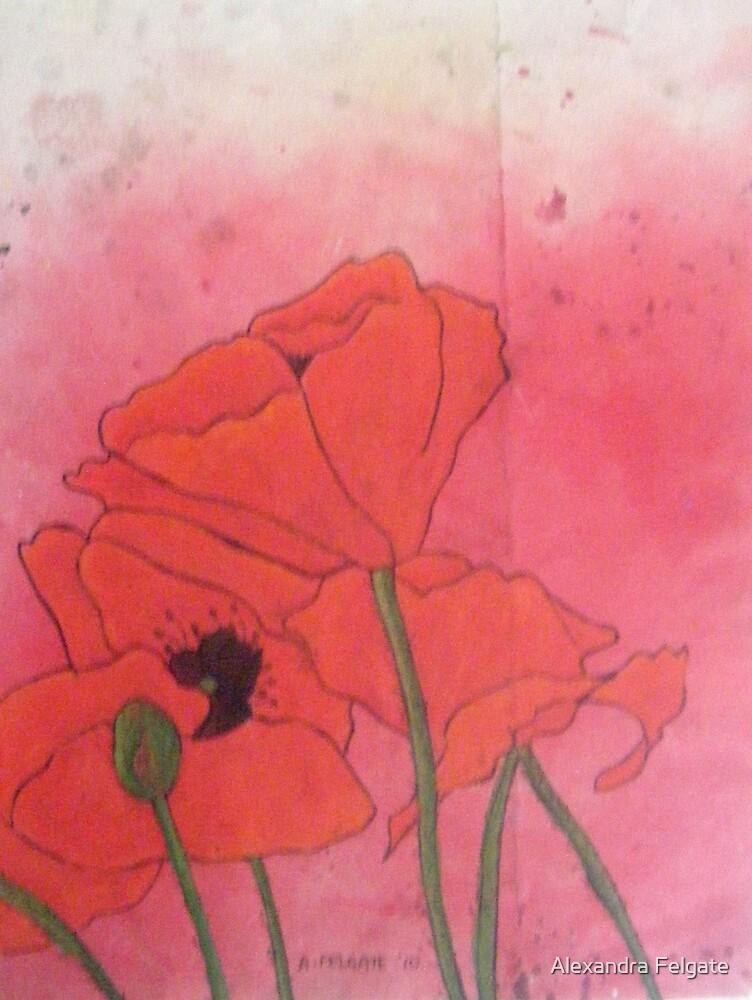 Poppies XVI by Alexandra Felgate