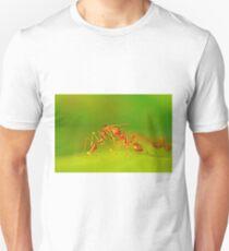 sweet contact Unisex T-Shirt