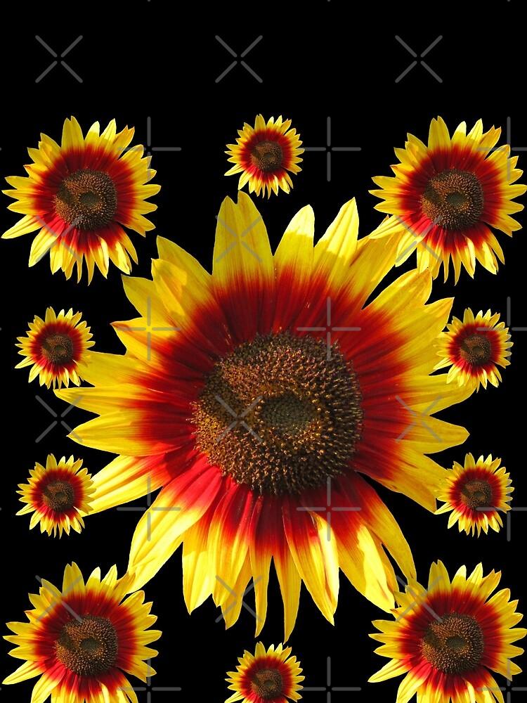 bunte, blühende Sonnenblumen, Sonnenblume, Blumen von rhnaturestyles