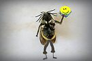 Don't Worry, Bee Happy by Susan Littlefield