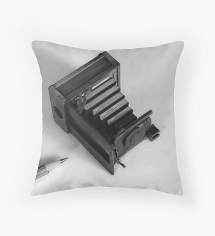 Words & Pictures Throw Pillow