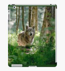 Timberwolf in Forest iPad Case/Skin
