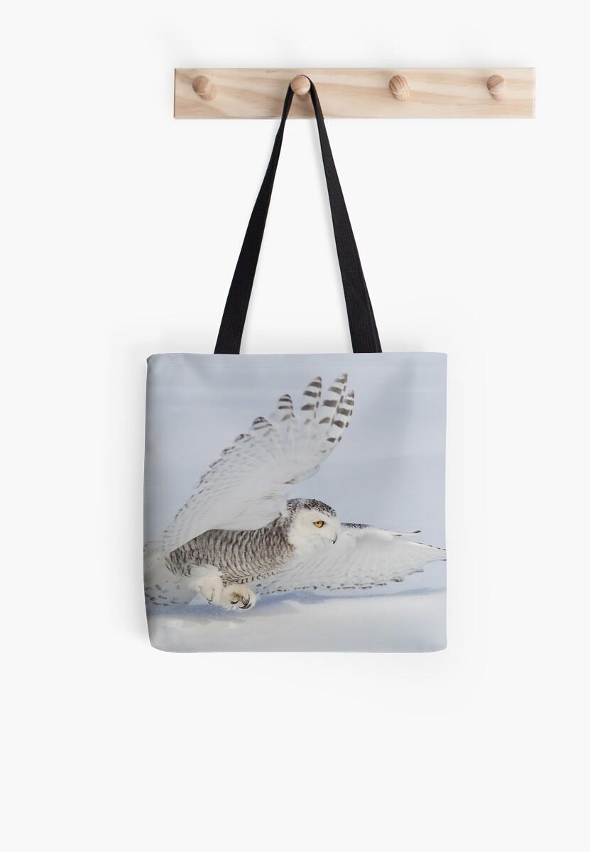 V Formation / Snowy Owl  by Gary Fairhead