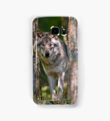 Timber wolf in Forest Samsung Galaxy Case/Skin