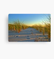 Between the Dunes at the Ostsee at Sunset Canvas Print