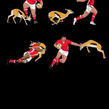 Wales vs The Springboks  by MrTWilson