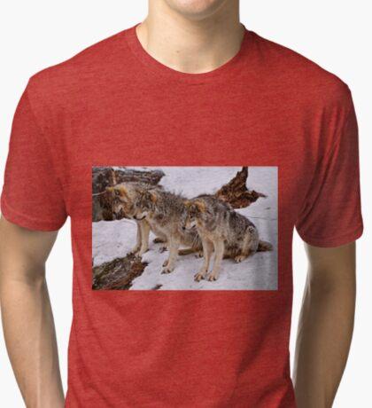We three Kings.... Tri-blend T-Shirt