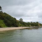 Cornish Beach by Country  Pursuits