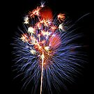 Fireworks Bursting in Air by Jason Pepe