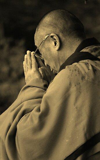 the Dalai Lama. aotearoa, new zealand by tim buckley   bodhiimages