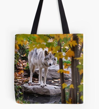 Timber Wolf by Pond Tote Bag