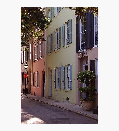 Pretty Lane in Charleston Photographic Print