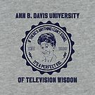 University of Television Wisdom by Richard Rabassa