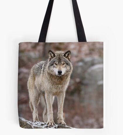 Timber Wolf on Rocks Tote Bag