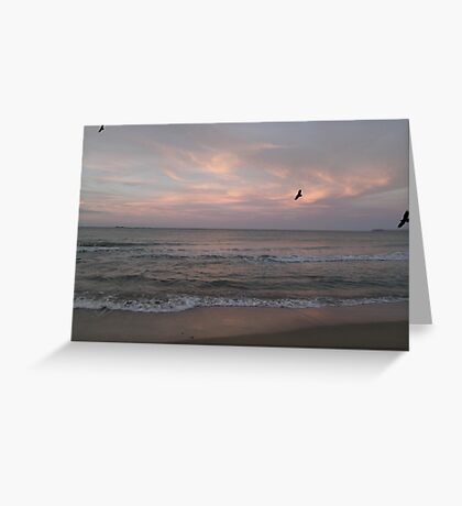 muted whispers of the songs of the seabirds Greeting Card