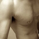 sepia torso by linelight