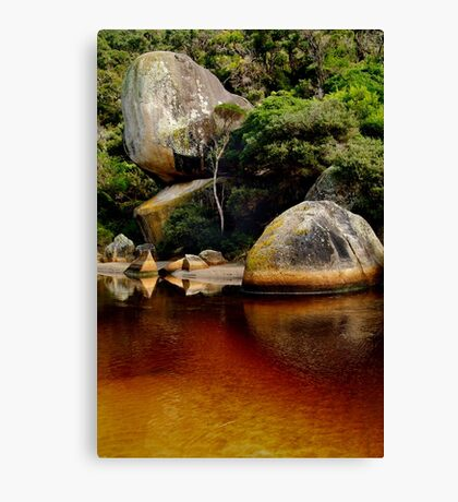 Tea Tree Stained Waters of Tidal River Canvas Print