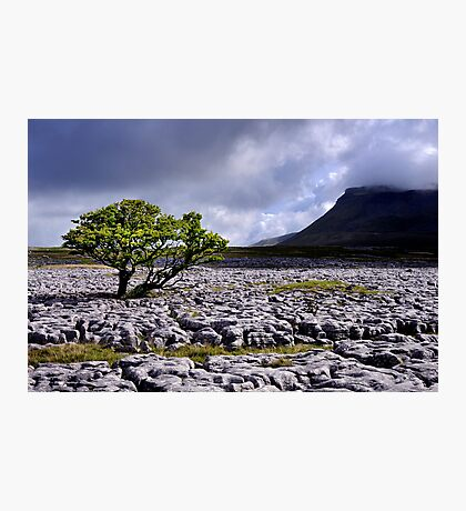 Ingleborough from White Scars Photographic Print