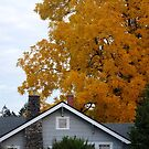 Cottage and Autumn Leaves by Marjorie Wallace