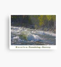 Water powers - Nesselva . Norway. Brown Sugar Story.Featured in Group Fishlike . Favorites: 1 Views: 324 . Thx! Metal Print