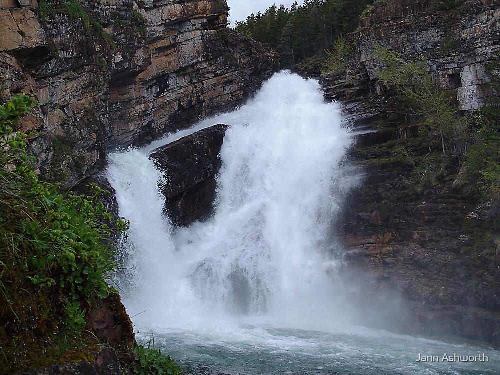 Cameron Falls, Waterton by Jann Ashworth