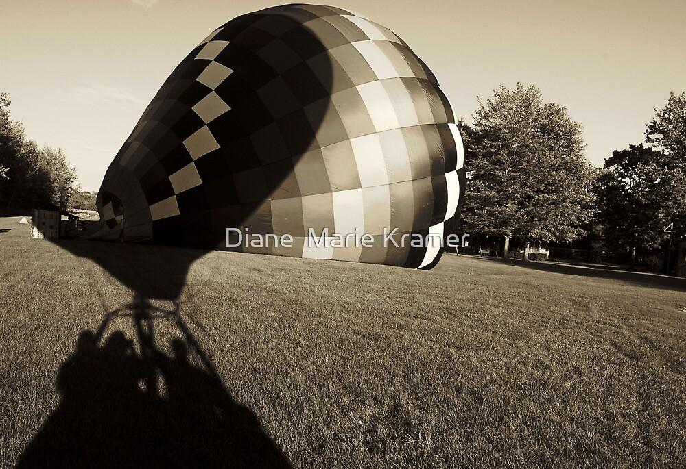 """Lift Off "" by Diane  Marie Kramer"