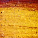 sedimentology by Lynne Prestebak