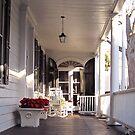 Southern Lifestyle in Charleston by Susanne Van Hulst