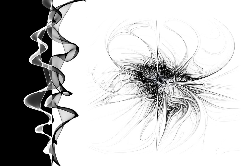 Black and White - 2 by Ann Garrett