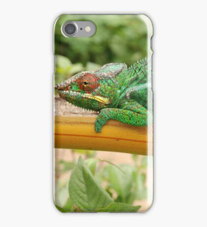 holding on.  madagascar iPhone Case/Skin