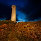 Hardy's Monument by Rob Lodge